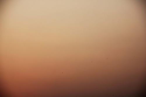 13_feb_2013_pink_sunset